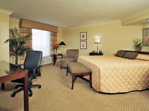 Executive Suites, King Guestroom
