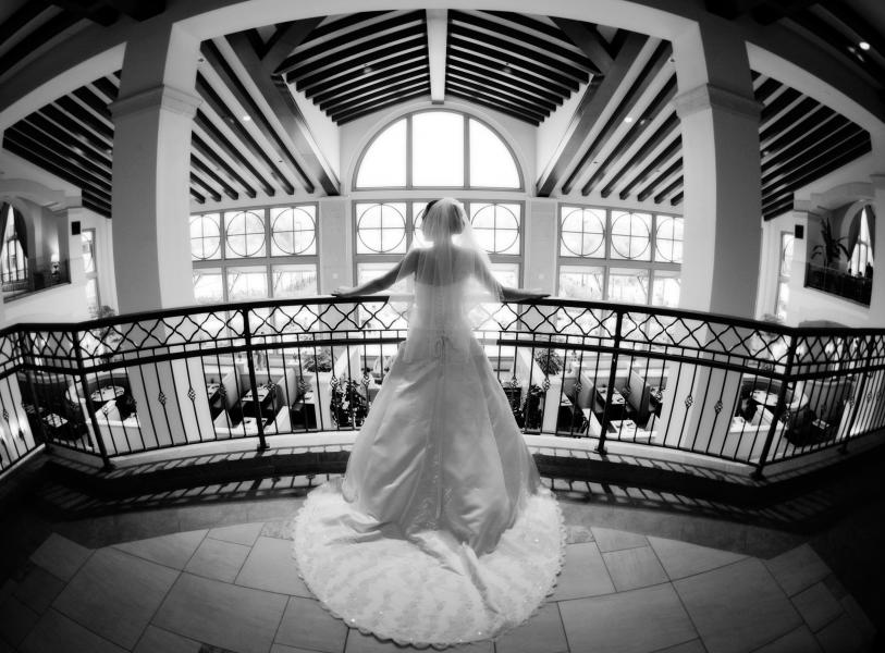 Wedding, Damon Tucci Photography