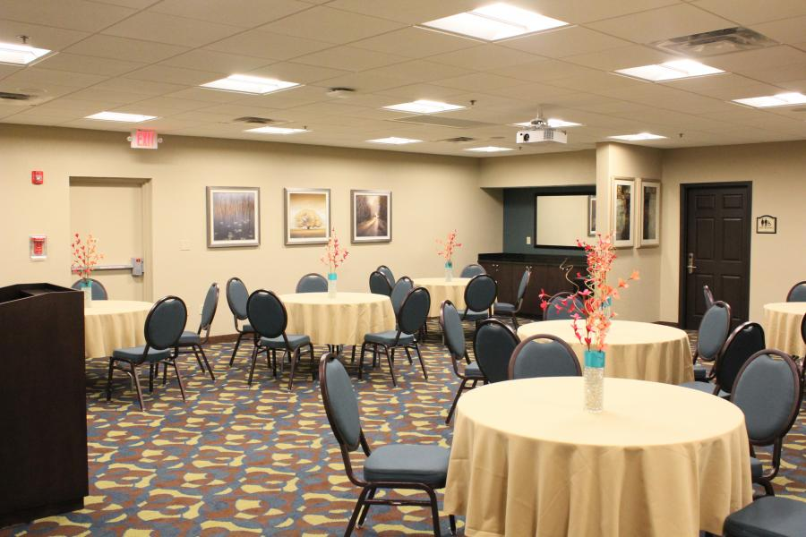 Tamar Meeting Room