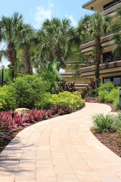 Walkway and Landscape