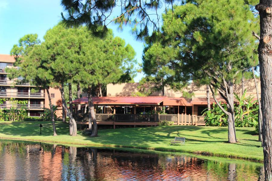 Pavilion and Landscape