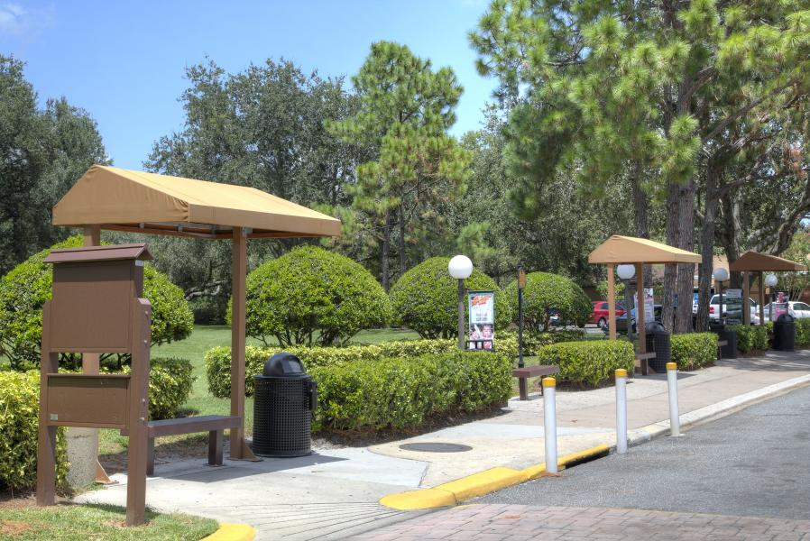 Theme Park Shuttle Bus Stop