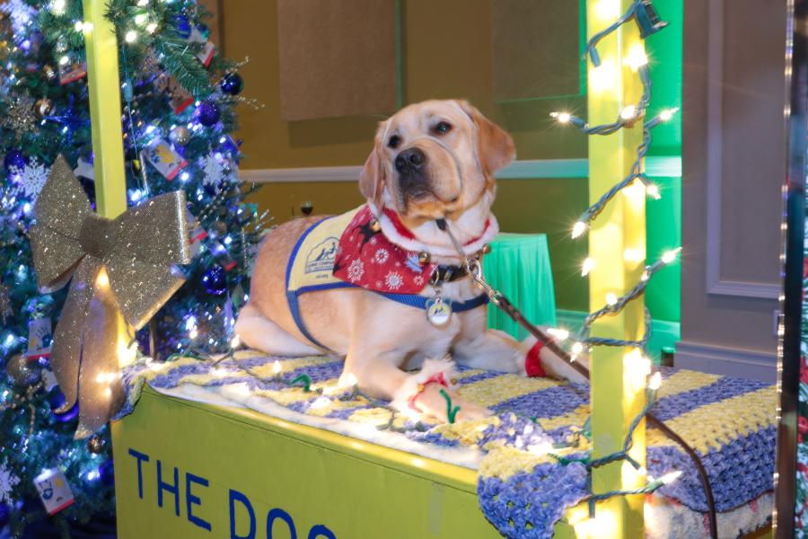 Dec., Sock it to Cancer -- A special guest of Canine Companions for Independence shares some puppy love for donations in his Peanuts-inspired booth.